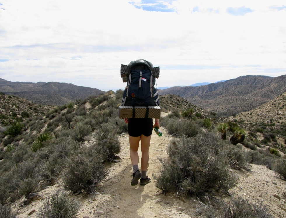 SeaSalt Chronicles 6: Backpacking Adventure At Joshua Tree Park