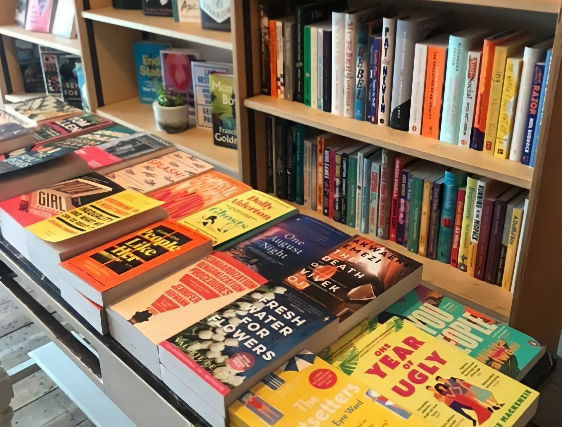 Hidden Bookshelf 8: Interview with Phlox Books